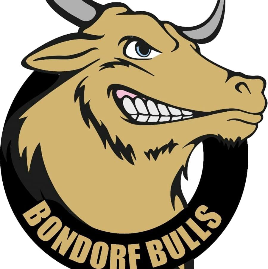 Bondorf Bulls